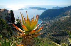 Ansicht über die Küstenlinie von französischem Riviera von Eze Stockbilder