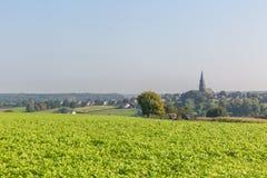Ansicht über ein Gemüsefeld und ein Dorf im Hintergrund Lizenzfreie Stockbilder