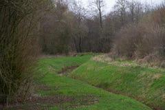 Ansicht über eine kleine Grabung umgeben durch Bäume in rhede emsland Deutschland stockfotografie