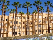 Ansicht über eine Reihe von Häusern mit einer Palmengasse vor ihr in Puerto de la Cruz lizenzfreies stockbild
