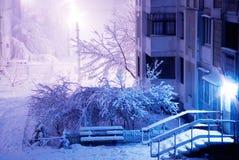 Ansicht über eine Winterstraße stockfotografie
