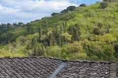 Ansicht über einen grünen Hügel in Toskana Lizenzfreie Stockbilder