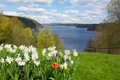 Ansicht über einen See, Schweden Lizenzfreie Stockfotos
