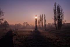 Ansicht über einen sonnigen Wintermorgen im Park Lizenzfreies Stockfoto