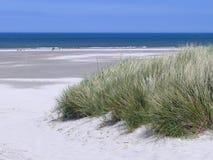 Ansicht über einen Strand lizenzfreies stockbild