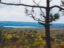 Ansicht über Fallwald und -see mit bunten Bäumen von oben genanntem im Algonquin-Park, Kanada stockfoto