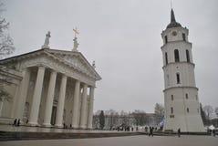 Ansicht über Gediminas-Turm am nebeligen Wintertag lizenzfreie stockbilder