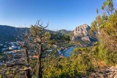 Ansicht über getrockneten Baum und Dickicht mit Marinestadt nahe Schwarzem Meer b Stockfotografie
