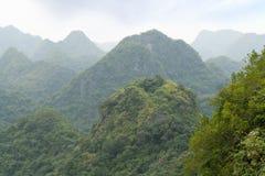 Ansicht über grünen und hügeligen Wald Stockbilder