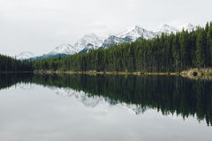 Ansicht über Herbert Lake Stockfotos