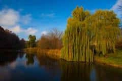 Ansicht über Herbstlandschaft von Fluss und von Bäumen am sonnigen Tag Lizenzfreies Stockbild