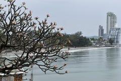 Ansicht über Hua Hin vom Affeberg Khao Takiab in Thailand, Asien Stockbilder