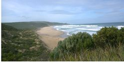 Ansicht über Johanna Beach, Victoria, Australien Stockbild