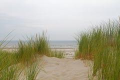 Ansicht über Meer von der Düne lizenzfreie stockfotografie