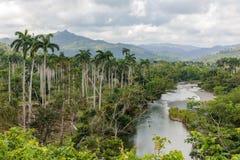 Ansicht über Nationalpark alejandro De Humboldt mit Fluss Kuba lizenzfreie stockfotos