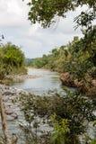 Ansicht über Nationalpark alejandro De Humboldt mit Fluss Kuba stockbild