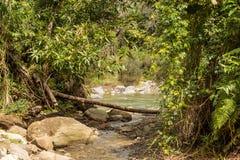 Ansicht über Nationalpark alejandro De Humboldt mit Fluss Kuba lizenzfreie stockfotografie