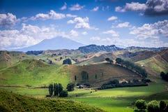 Ansicht über Ngauruhoe-Vulkan, Nationalpark Tongariro, Neuseeland stockbild