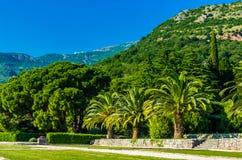 Ansicht über Park und Berge in Montenegro Stockbilder