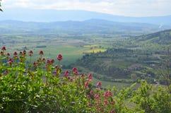 Ansicht über Provence Lizenzfreies Stockbild