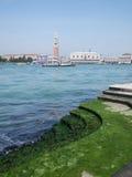 Ansicht über San Marco Stockbild