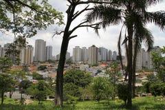 Ansicht über Sao-Paulo lizenzfreie stockfotografie