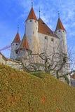 Ansicht über Schloss und Bäume Thun in der Schweiz Stockfotografie