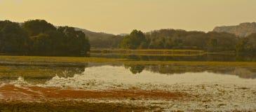 Ansicht über See an Nationalpark Ranthambore Stockbild