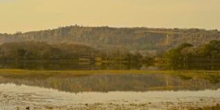 Ansicht über See an Nationalpark Ranthambore Lizenzfreies Stockbild