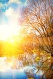 Ansicht über Sonnenaufgang auf kleinem Fluss in blattlosem Wald-instagram stil Lizenzfreies Stockfoto