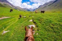 Ansicht über Tal von der Pferderückseite, Kirgisistan stockbilder