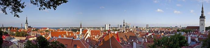 Ansicht über Tallinn in Estland stockbilder