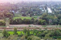 Ansicht über thailändische landwirtschaftliche Bäume Lizenzfreies Stockbild