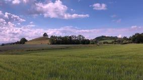 Ansicht über Tobias-Hügel in den tschechischen böhmischen Hochländern, stock video