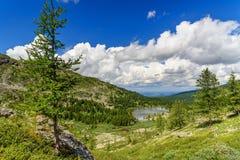 Ansicht über vierten See von Karakol Seen in Altai-Republik Russland Lizenzfreie Stockfotografie