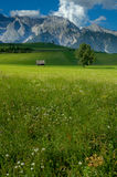 Ansicht über Wälder und Berge Lizenzfreie Stockbilder