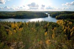 Ansicht über Wald in den Herbstfarben Lizenzfreies Stockfoto