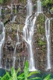 Ansicht über Wasserfall mit Dschungel auf Reunion Island lizenzfreie stockbilder
