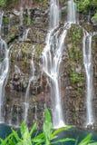 Ansicht über Wasserfall mit Dschungel auf Reunion Island lizenzfreie stockfotos