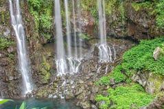 Ansicht über Wasserfall mit Dschungel auf Reunion Island lizenzfreies stockfoto