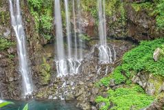 Ansicht über Wasserfall mit Dschungel auf Reunion Island stockbild