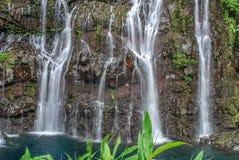 Ansicht über Wasserfall mit Dschungel auf Reunion Island lizenzfreies stockbild