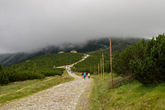 Ansicht über Weise zu ÅšnieÅ-¼ Ka, riesige Berge, Polen Lizenzfreie Stockfotos