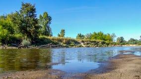 Ansicht über wilden die Weichsel-Flussufer in Jozefow nahe Warschau in Polen stockfotografie