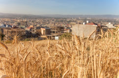 Ansicht Addis Ababas Stockfotografie
