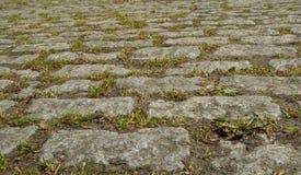 Ansicht alter der gepflasterten Pflasterung des Ziegelsteines Block stockfoto
