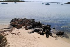 Ansicht über Sarg-Bucht Stockbild
