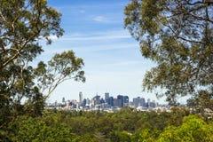 Ansicht botanischen Gartens Brisbanes stockfotografie