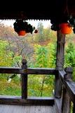 Ansicht in den Hof von Heilig-Anna--Rohiakloster, aufgestellt in einem natürlichen und lokalisierten Platz, in Maramures, Siebenb Lizenzfreie Stockfotos
