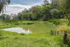 Ansicht der Aclimacao-Parknatur in Sao Paulo Stockfotos